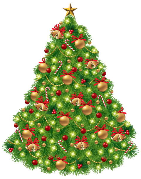X-mas Tree with Decoration PNG Image