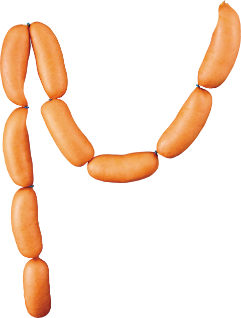 Sausage PNG Image
