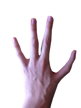 4 Fingered Hand PNG