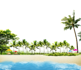 Beach with Coconut Palms and Summer Huts PNG