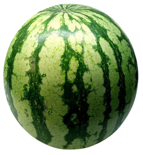 Big Green Watermelon PNG