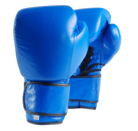 Blue Boxing Gloves PNG