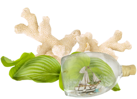 Aquarium Decor with Bottle Ship PNG