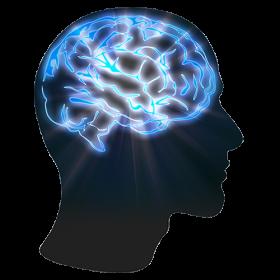 Brain Education Help  Idea  Knowledge  Mind PNG