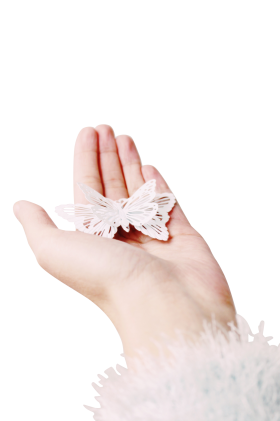 Butterfly In Hand PNG