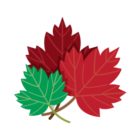 Drawing of Red and Green Maple Leaves PNG