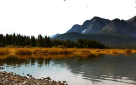 Waterbody by Vegetation and Mountains PNG