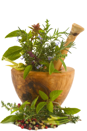 Chinese Herbs PNG