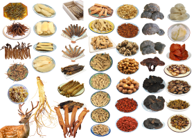 Chinese Food Ingredients PNG