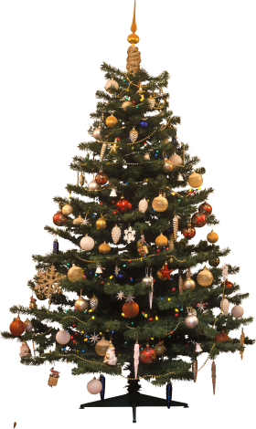 Christmas Tree Traditional  PNG