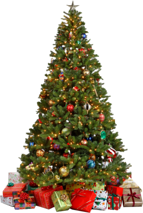 Traditional Christmas Tree with Gifts PNG