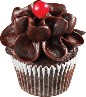 Chocolate Flower Cupcake PNG