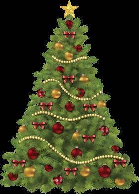 X-mas Tree   PNG
