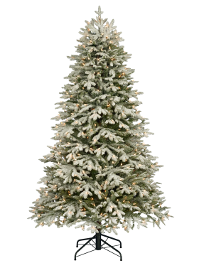 Traditional Christmas Tree with Snow PNG