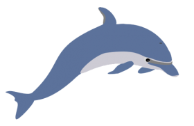 Cute Clipart Dolphin PNG