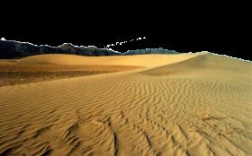 Desert Landscape PNG