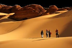Desert Tourists PNG