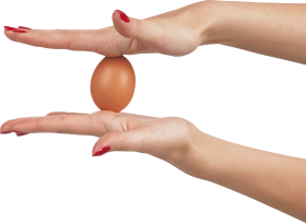 Egg Between Hands PNG