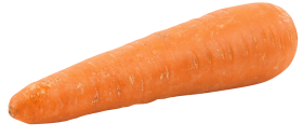 Fat Orange Carrot PNG
