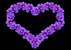 Flower Heart PNG