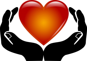 Heart in Hands PNG