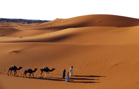 Journey with Camels in the Desert PNG