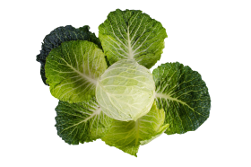 Kale PNG