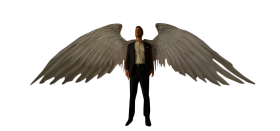 Lucifer morning star with wings PNG