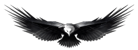 Metal eagle Art PNG