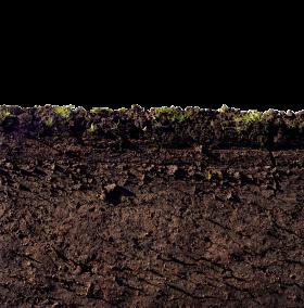 Mud PNG