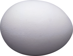 One White Egg PNG