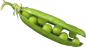 Peas in a Pod PNG