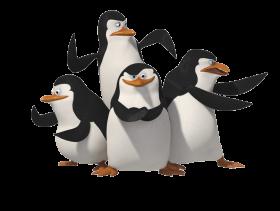 penguins of madagascar defense PNG