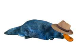 Perry the Platypus in Reallife PNG