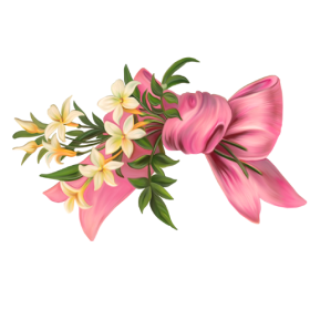 Pink Bow PNG