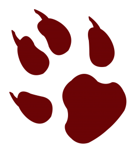 Animal Footprint PNG