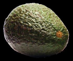 Aocado PNG