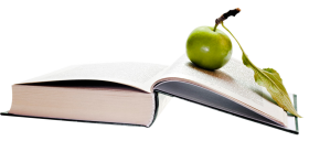 Apple on Book PNG