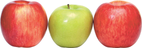 Apple's PNG