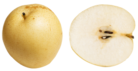 Asian Pear slice PNG
