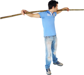 Bamboo Standing PNG