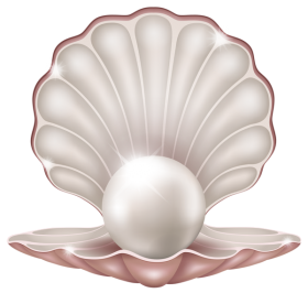 Beautiful Clam WIth Pearl PNG