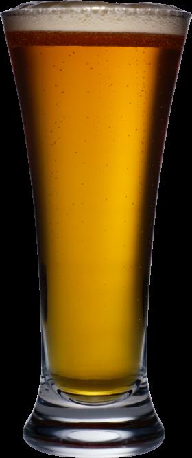 Beer in Mug PNG