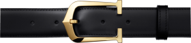 Belt With Gold Color Buckles PNG