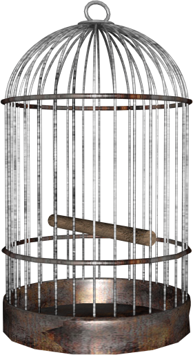 Bird Cage PNG