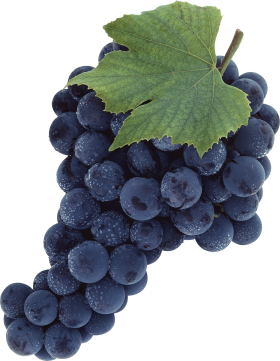 Black Grapes PNG