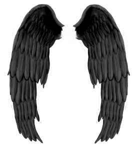 Black Wings PNG
