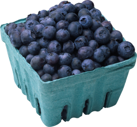 Blueberries PNG