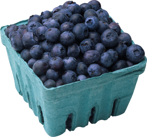 Blueberry Box PNG