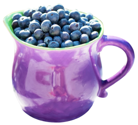 Blueberry in Mug PNG
